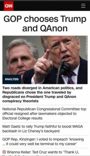GOP CHOOSES trump and qanon -01-28_15-52-33.jpg