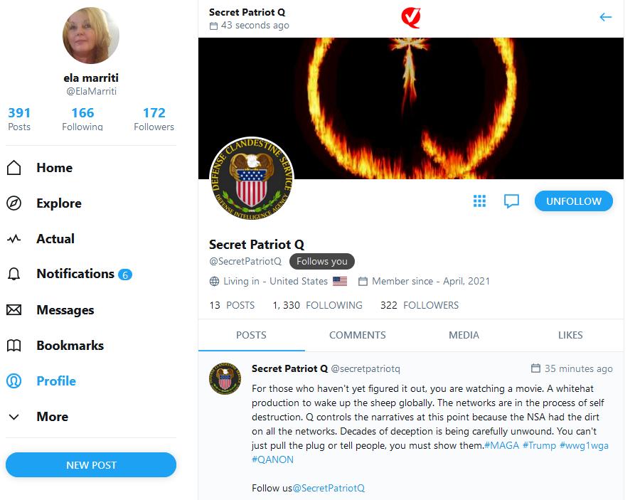 Secret Patriot Q - Mozilla Firefox 17_04_2021 15_45_41 (2).png