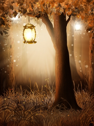LIGHT round-2887350_1280.jpg