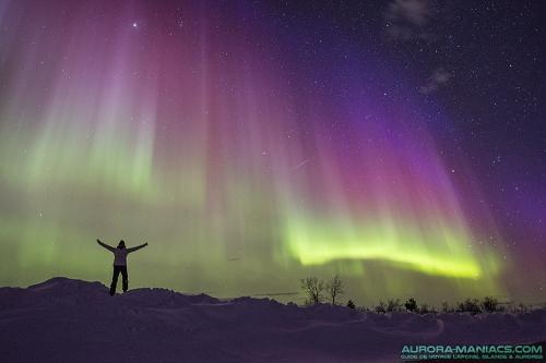 Laponie-aurore-boreale-violette.jpg